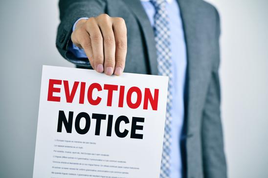 spring eviction company